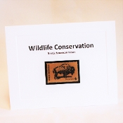 Wildlife Conservation Stamp Notecard